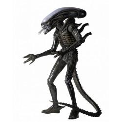 Alien 1979 Figura 1/4 Alien Xenomorph ( 56 cm )
