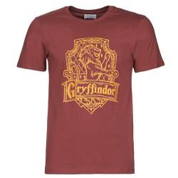 Camiseta HARRY POTTER - (M) - Gryffindor